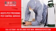 Pest Exterminator in Canada | Roots Pest Control