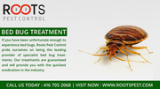 Bed Bug Treatment | Roots Pest Control