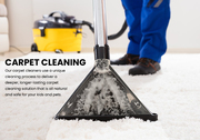 Carpet Cleaning Services in Brampton