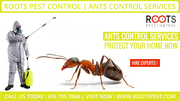 Roots Pest Control