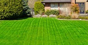 Toronto GTA - Grass cutting service