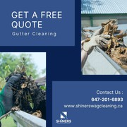 Gutter Cleaning Services in Brampton